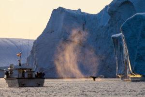 Iceland-Greenland-slideshow-3778