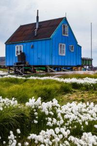 Iceland-Greenland-slideshow-4697